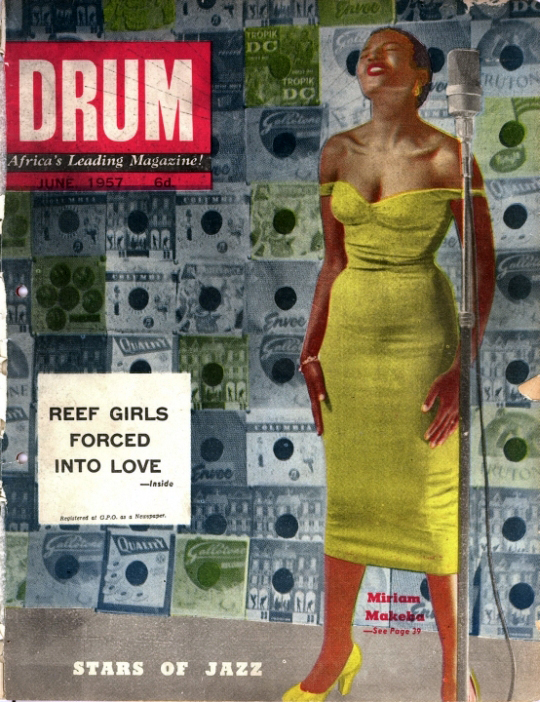 Ladybug-Drum Mag2