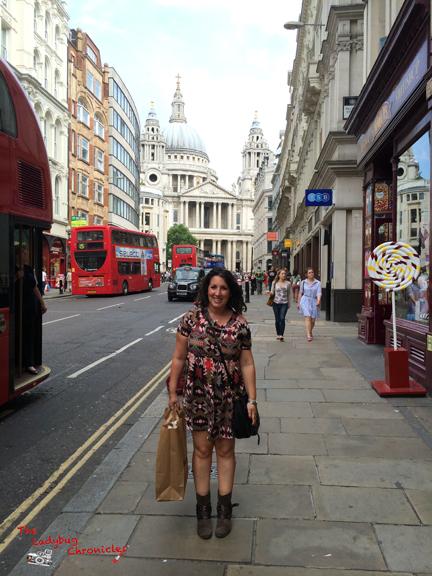 The Ladybug Chronicles - London 2 2014 05