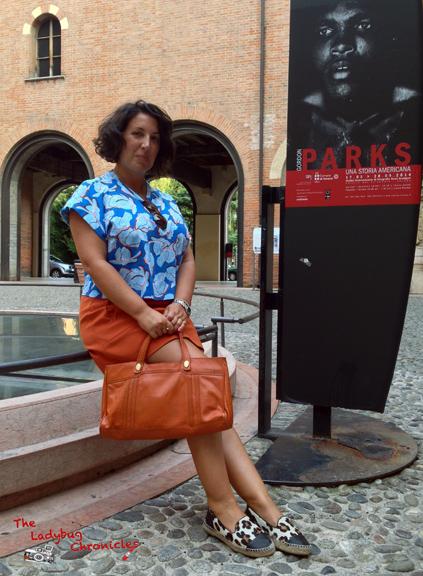 The Ladybug Chronicles - Gordon Parks in Verona 01