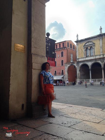 The Ladybug Chronicles - Gordon Parks in Verona 03