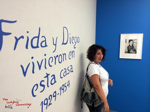 The Ladybug Chronicles - Frida Photology 05