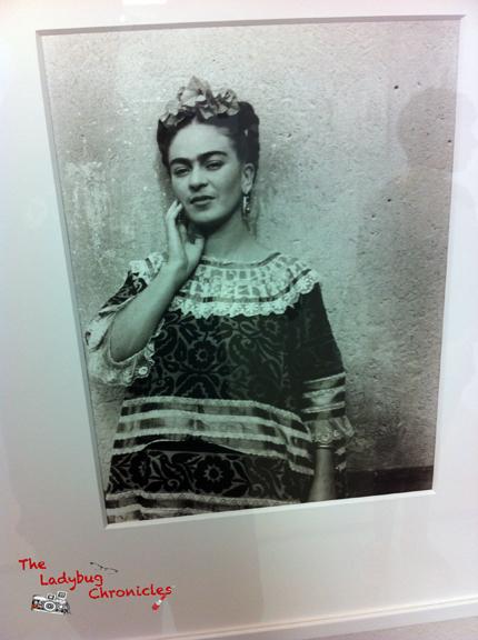 The Ladybug Chronicles - Frida Photology 06