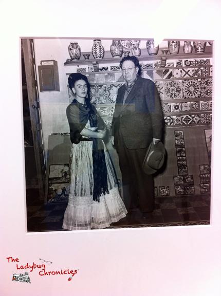 The Ladybug Chronicles - Frida Photology 07