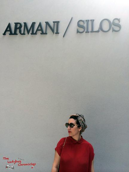 The Ladybug Chronicles - Armani Silos 01