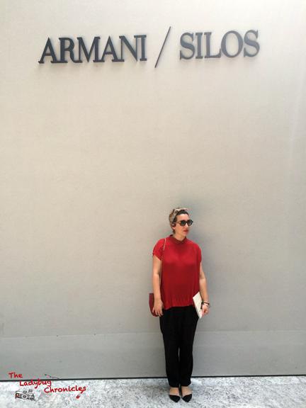 The Ladybug Chronicles - Armani Silos 02