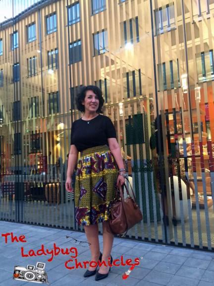 The Ladybug Chronicles MUDEC Africa (2)