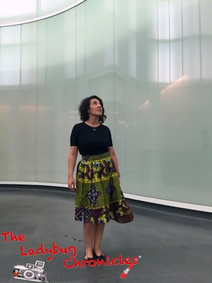 The Ladybug Chronicles MUDEC Africa (7)