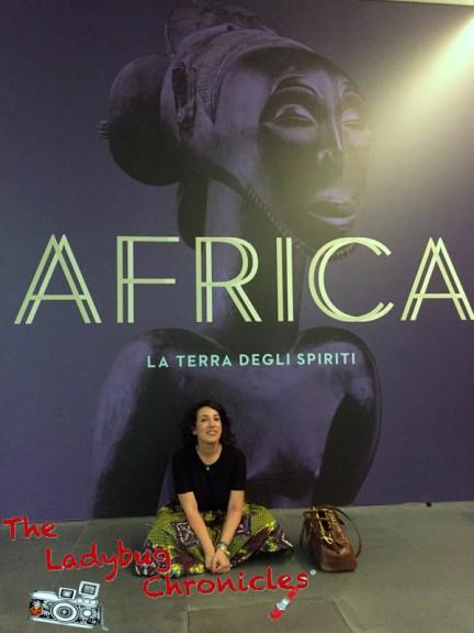 The Ladybug Chronicles MUDEC Africa (8)