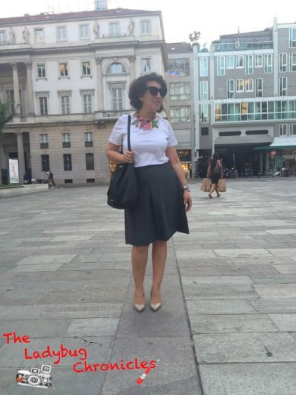 The Ladybug Chronicles pleat skirt (2)
