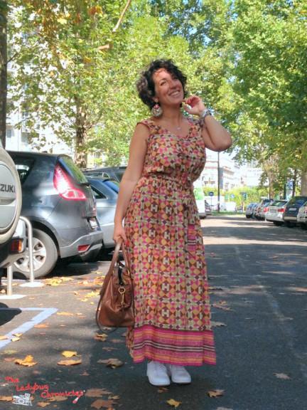 The Ladybug Chronicles Festival Dress (5)