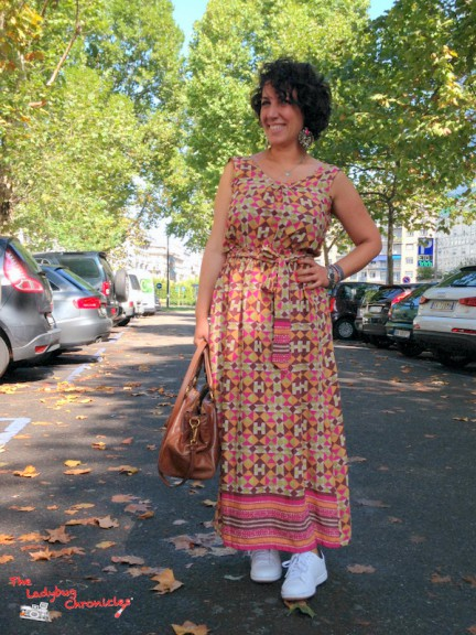 The Ladybug Chronicles Festival Dress (6)