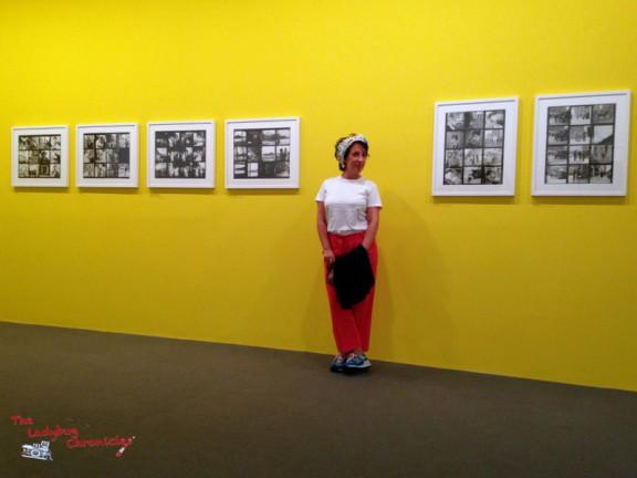 The Ladybug Chronicles Vivian Maier (3)