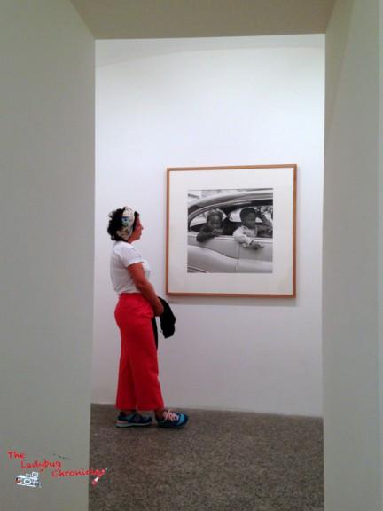 The Ladybug Chronicles Vivian Maier (6)
