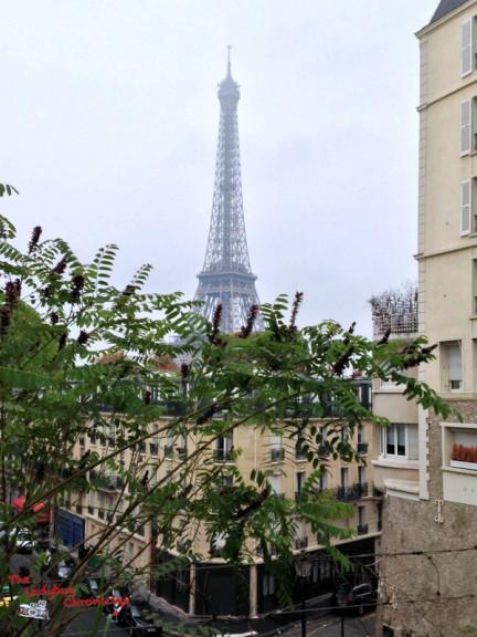 The Ladybug Chronicles Paris (6)