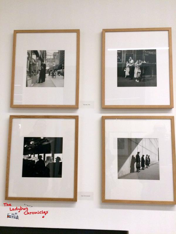 The Ladybug Chronicles Vivian Maier Milano (4)