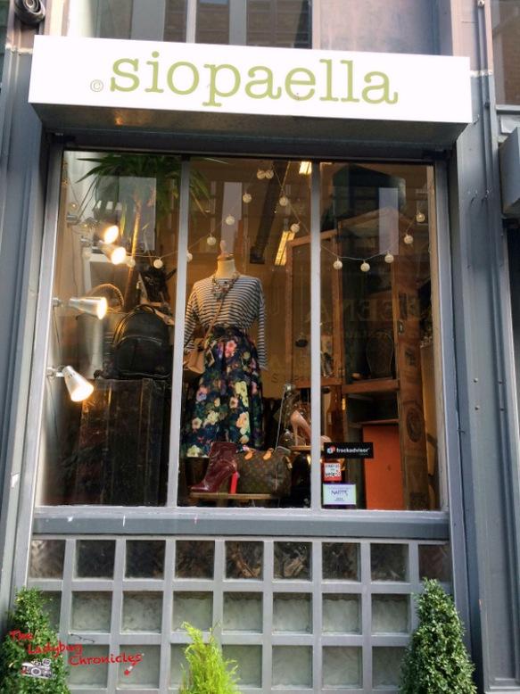 The Ladybug Chronicles Vintage Dublin (5)