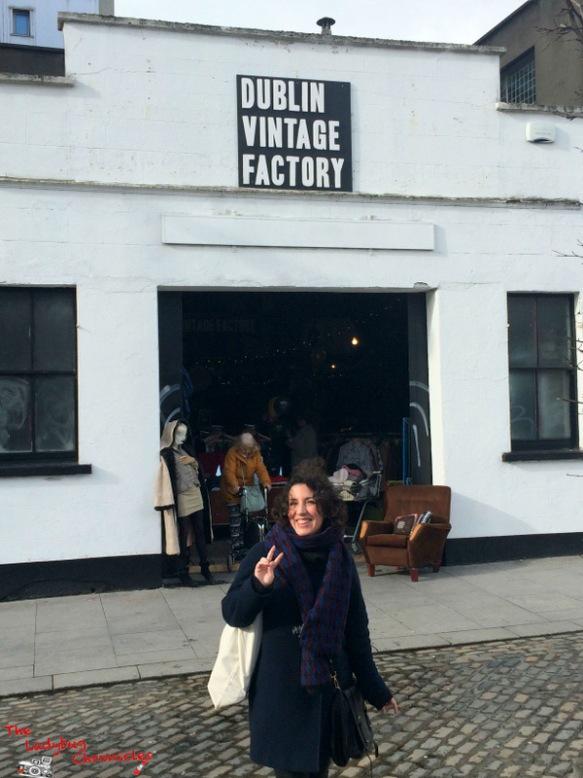 The Ladybug Chronicles Vintage Dublin (6)