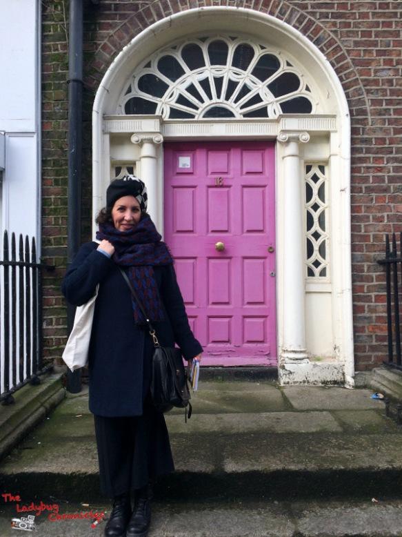 The Ladybug Chronicles Dublin (4)