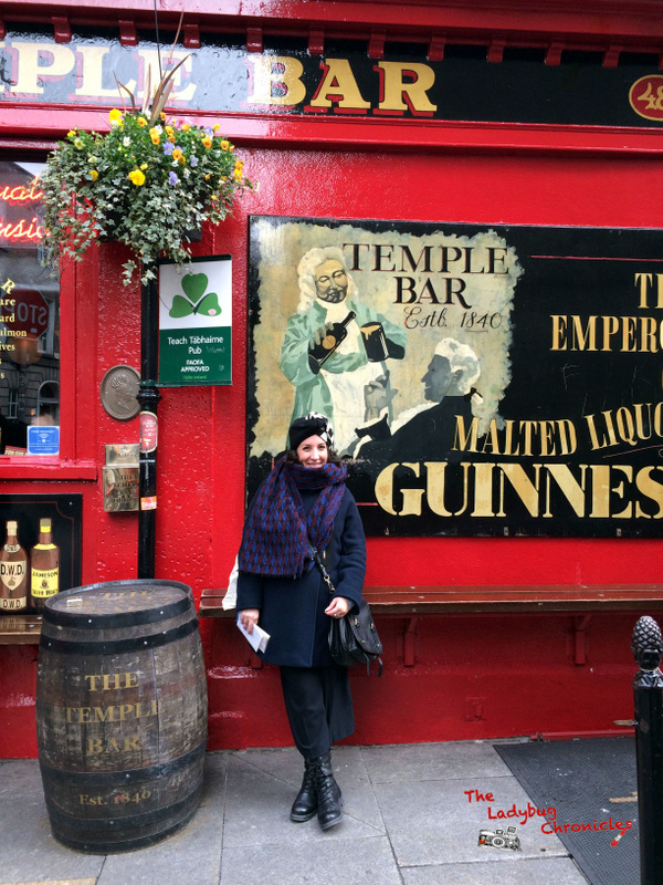 The Ladybug Chronicles Dublin (5)