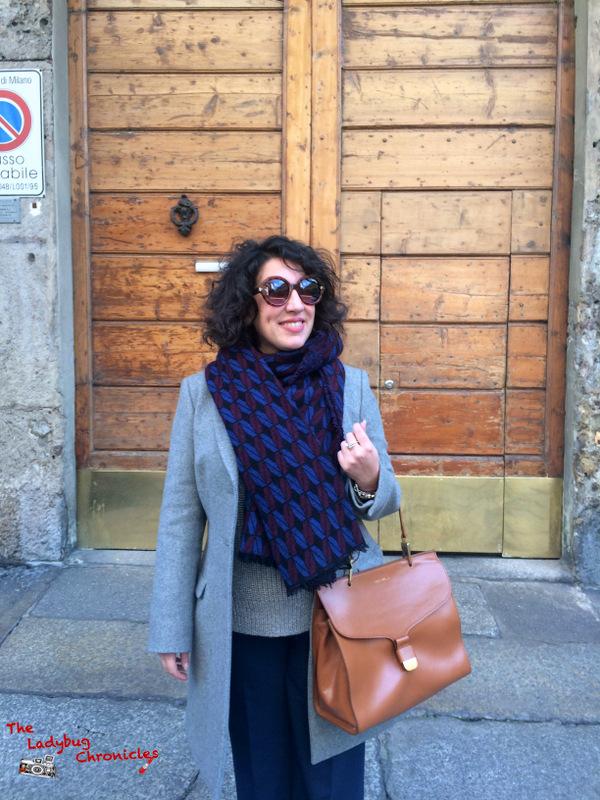 The Ladybug Chronicles via Solferino (3)