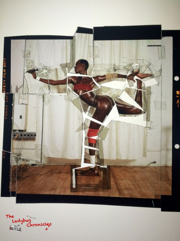 The Ladybug Chronicles Jean Paul Goude (4)