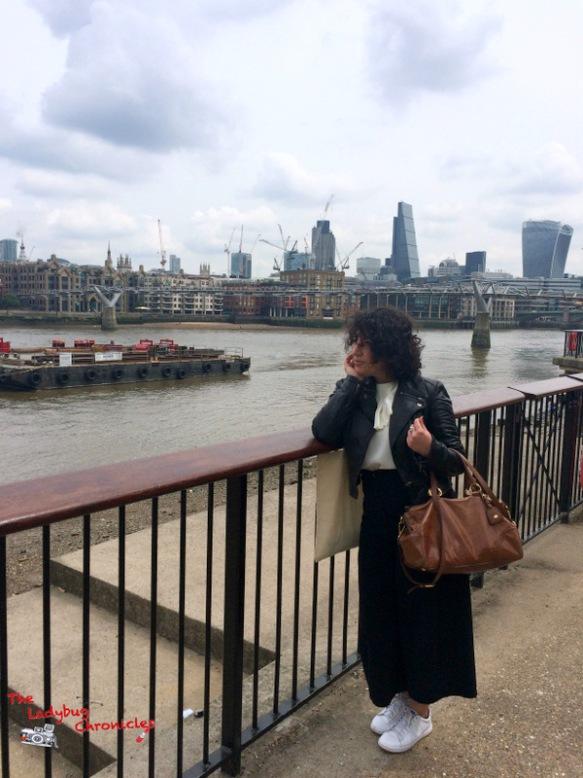 The Ladybug Chronicles London 1 (2)