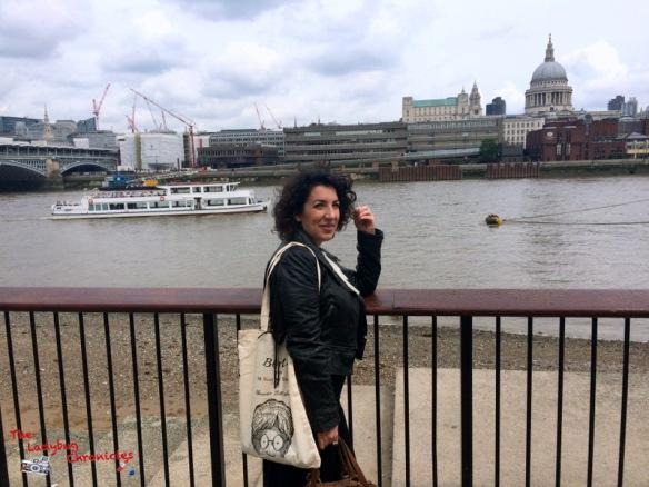 The Ladybug Chronicles London 1 (3)