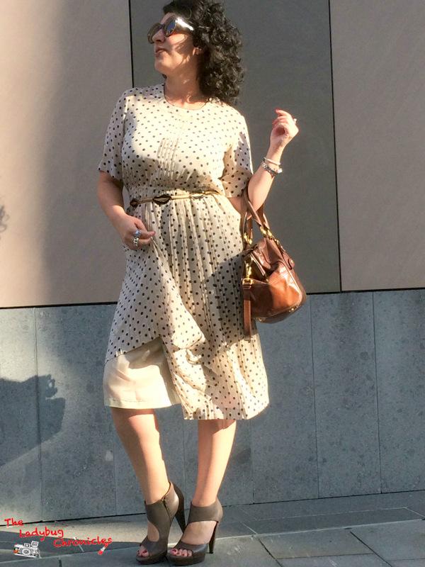The Ladybug Chronicles Vintage Dress (1)