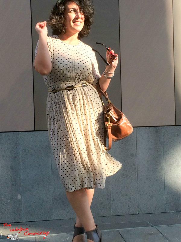 The Ladybug Chronicles Vintage Dress (2)