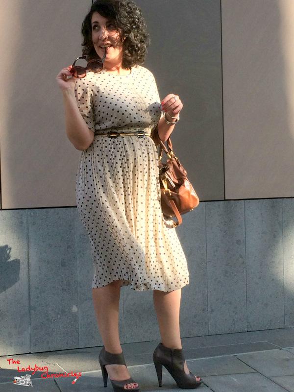 The Ladybug Chronicles Vintage Dress (3)