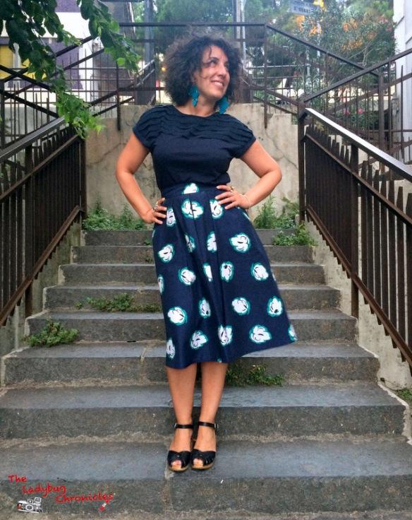 The Ladybug Chronicles Vintage Skirt (1)