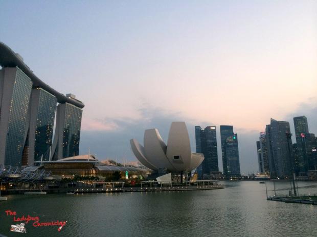 the-ladybug-chronicles-travels-to-singapore-11
