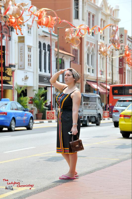 the-ladybug-chronicles-travels-to-singapore-4