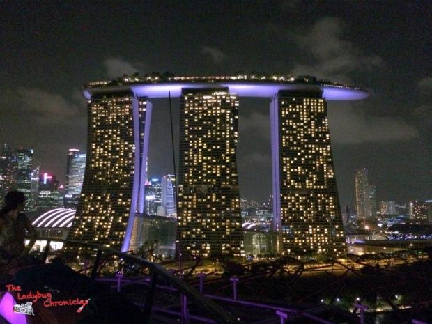 the-ladybug-chronicles-travels-to-singapore-7
