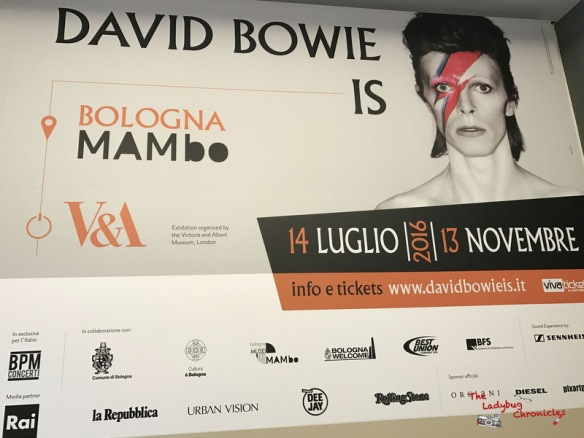 the-ladybug-chronicles-david-bowie-is-1