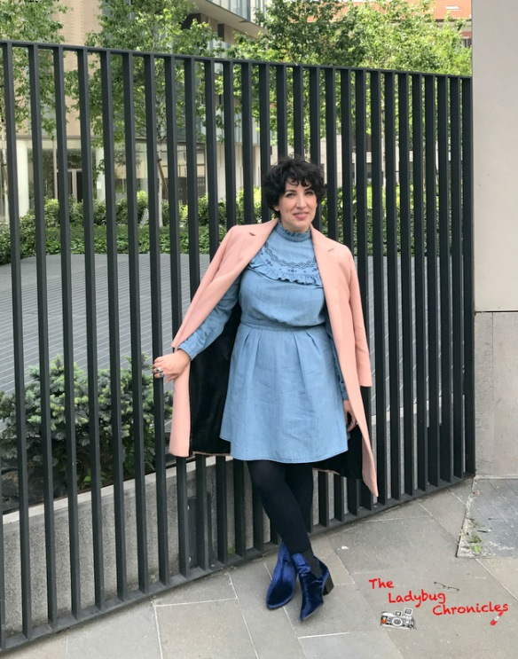 The Ladybug Chronicles Denim Dress (4)
