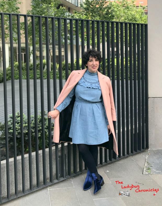 The Ladybug Chronicles Denim Dress (4)