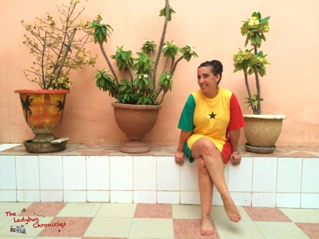 The Ladybug Chronicles Dakar Senegal (15)