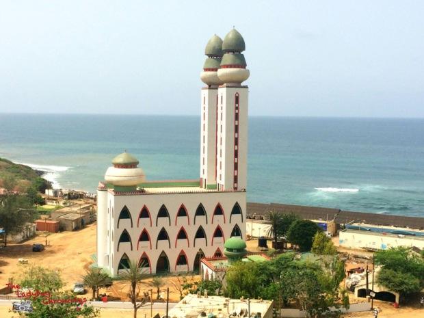 The Ladybug Chronicles Dakar Senegal (4)