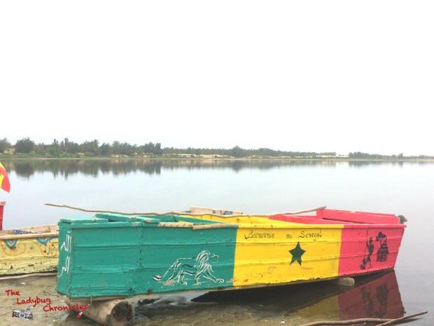 The Ladybug Chronicles Dakar Senegal (5)