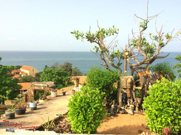 The Ladybug Chronicles Gorée Senegal (11)