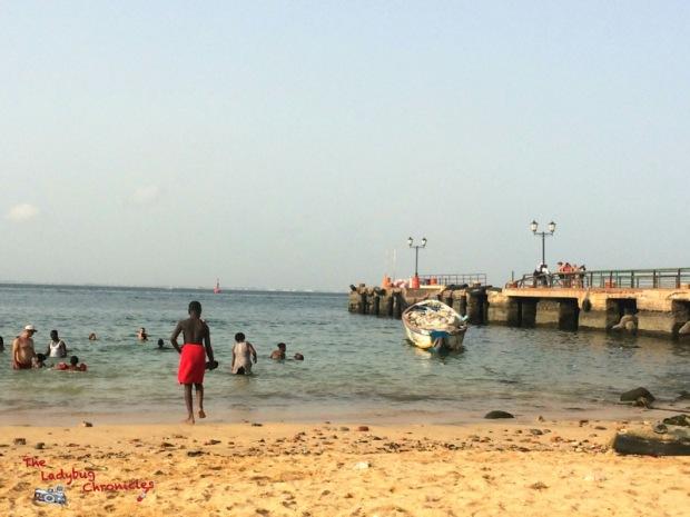 The Ladybug Chronicles Gorée Senegal (13)