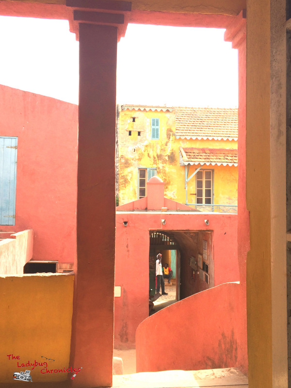 The Ladybug Chronicles Gorée Senegal (5)