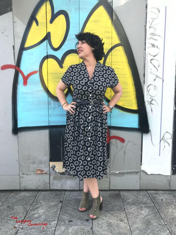 The Ladybug Chronicles Lullaby Dress (6)