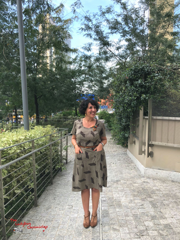 The Ladybug Chronicles Humana Brown Dress (1)