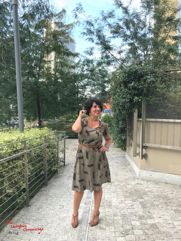 The Ladybug Chronicles Humana Brown Dress (3)