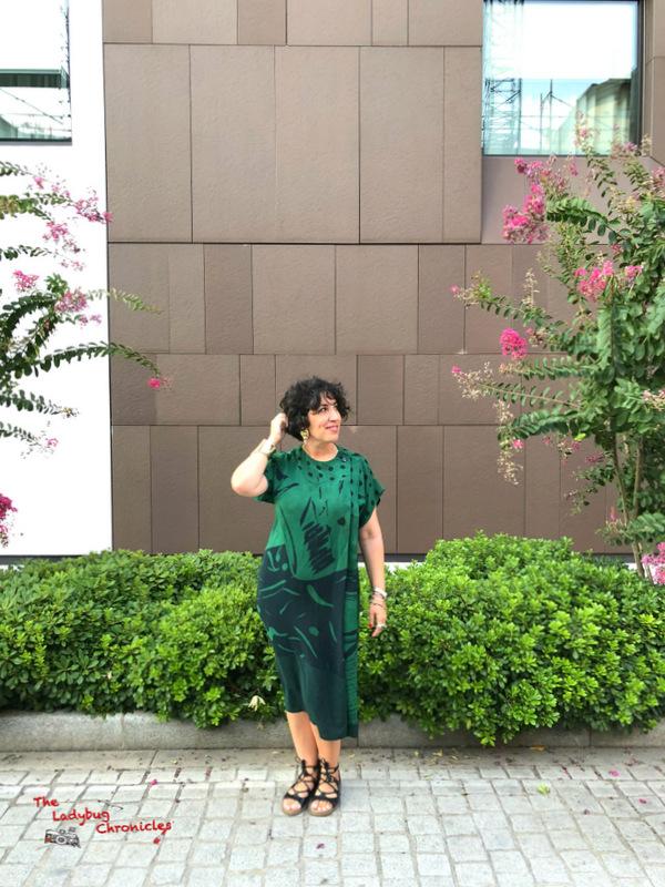 The Ladybug Chronicles Humana Green Dress (1)