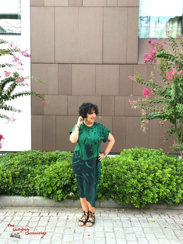 The Ladybug Chronicles Humana Green Dress (2)