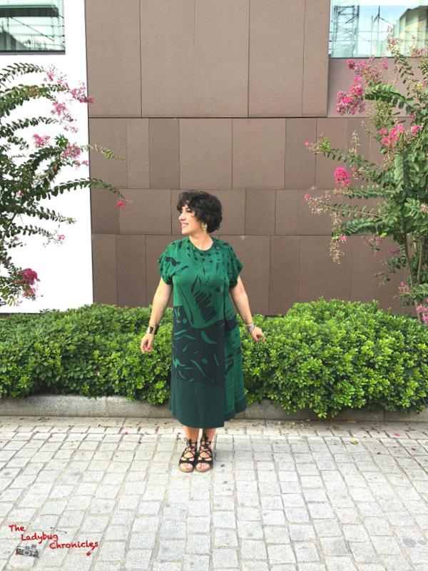 The Ladybug Chronicles Humana Green Dress (4)