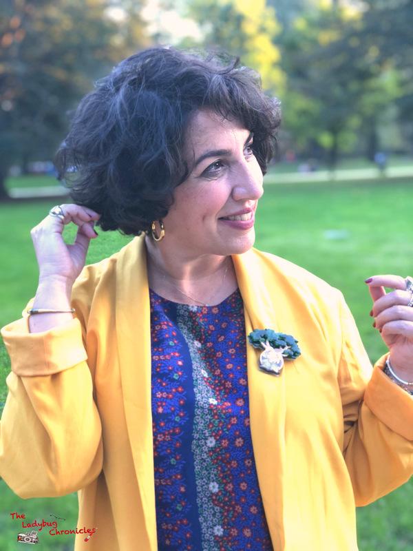 The Ladybug Chronicles Babobab brooch (6)